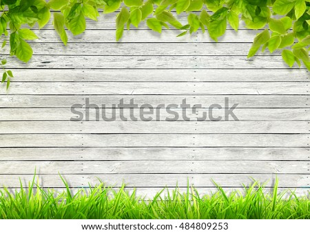 white wood background image
