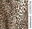 wild animal skin - stock photo