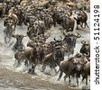 Wildebeest, crossing river Mara, Serengeti National Park, Serengeti, Tanzania, Africa - stock photo