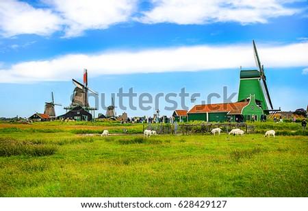 Windmill Farm Landscape