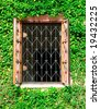 window with bar and ivy - stock photo