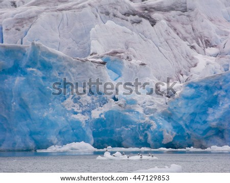 Winter ice landscape