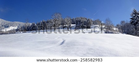 Winter landscape at alps, Europe,  Austria