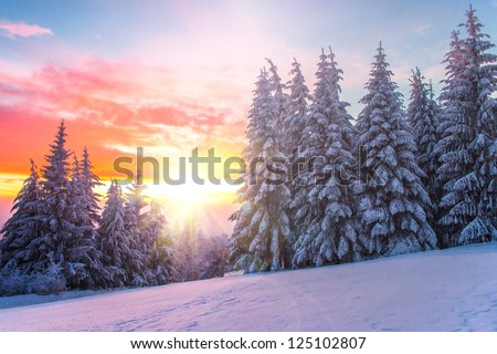 Winter landscape on a sunset. Bulgaria