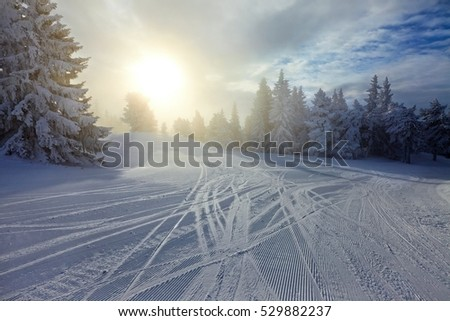 Winter landscape with hazy sunlight, beautiful snow