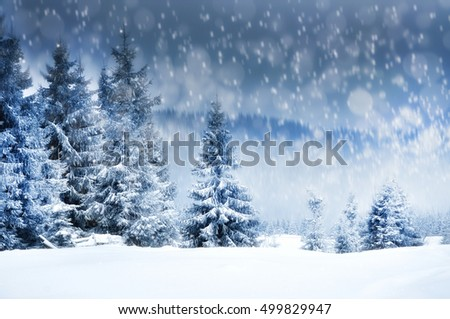 Winter landscape with snowy trees and snowflakes. Christmas concept. Motion blur