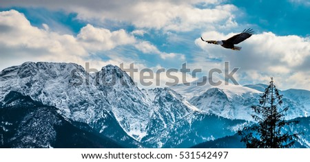 Winter mountains panorama of Zakopane,  High Tatra Mountains, Poland