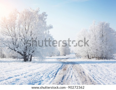 Winter rural road in a forest with frozen trees