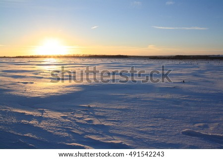 Winter sunset in a snow field.
