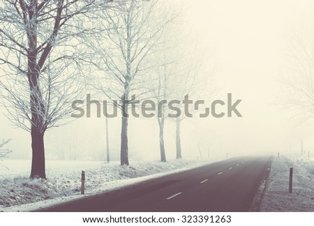 Winter trees, fog and snowy road; vintage filter effect