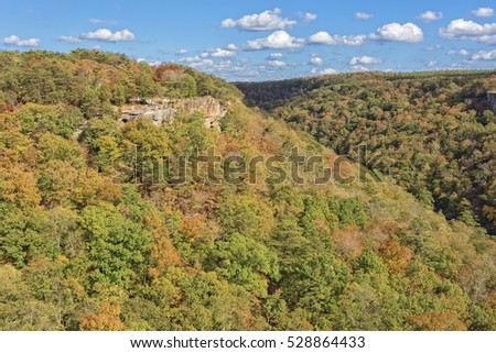 Wolf Creek Overlook At Little River Canyon In Alabama