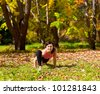 Woman exercises in the autumn forest yoga - stock photo