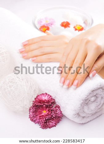 Woman hands with colorful chrysanthemum on a towel