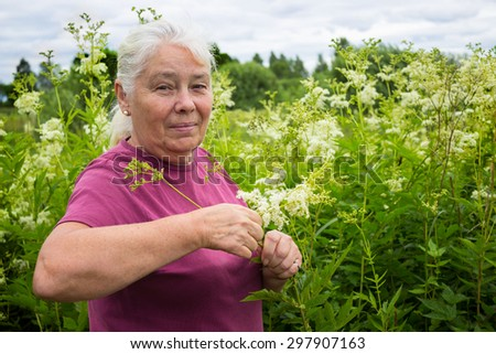 Woman in the summer picking flowers  meadowsweet