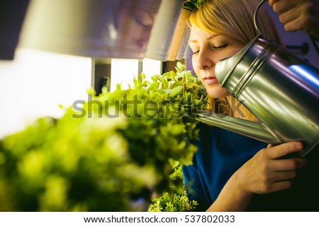 Woman pours from a watering green plants in pots in the room, hanging from the wall with lighting in a row. beautiful girl holding a watering can with water