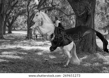 woman riding a white azteca mare horse