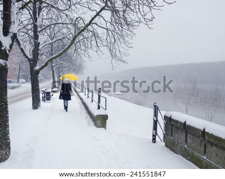 Woman walking with umbrella on snowy winter day.