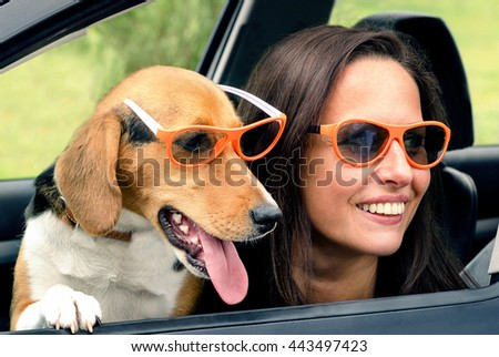 Woman with beagle dog in a car. Toned