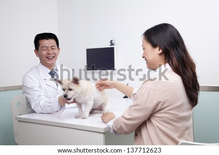 Woman with pet dog in veterinarian's office