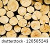 Wood stump background - stock photo