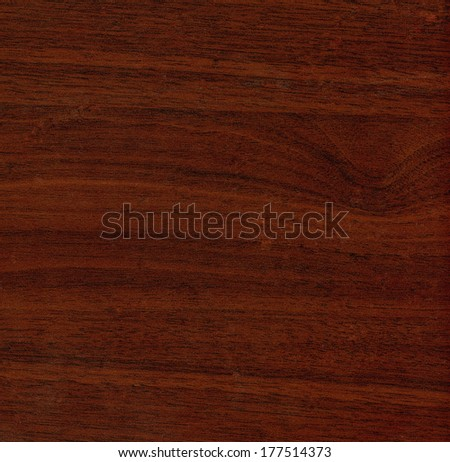 wood texture, can be used in design