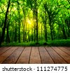 wood textured backgrounds in a room interior on the forest backgrounds - stock photo