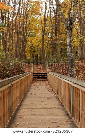 Wooden bridge and steps leading to a path covered with fallen leaves into a forest preserve at Petrifying Springs Park, Kenosha, Wisconsin, USA