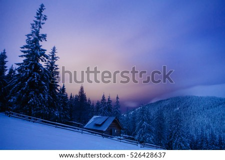 wooden house in winter forest in Crrpathian mountains  , at night