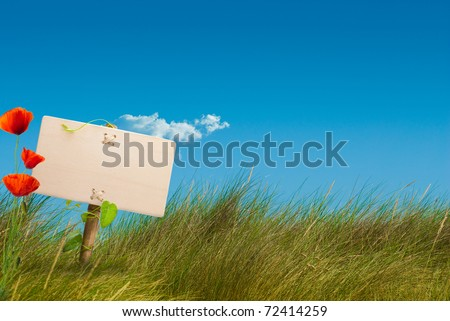 wooden sign on the center of a green wild land with a blue sky, with one cloud, horizontal image