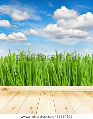 wooden terrace with view of green field and cloudy blue sky