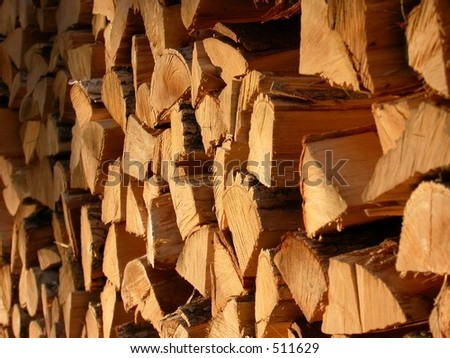Woodpile in Maine