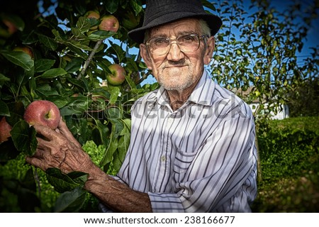 Wrinkled and expressive old farmer checking the fruits of his labor.