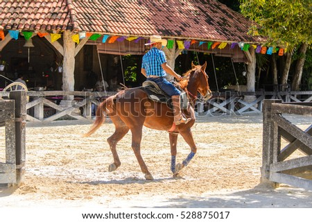 XCARET, MEXICO - NOV 7, 2016: Unidentified cowboy rides a horse in the Xcaret park, Mexico