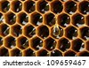 yellow beautiful honeycomb with honey, background - stock photo