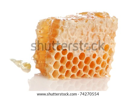 Yellow honeycomb slice on a white background