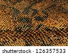 Yellow snake skin background - stock photo