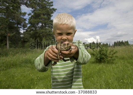 Young blonde boy holding a frog