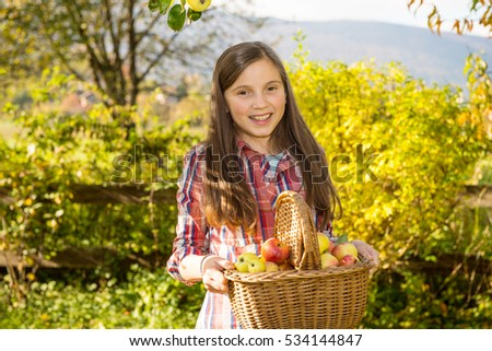 young pre teen girl picking apples in the garden
