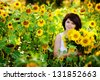 Young  woman with a bouquet of sunflowers in the field - stock photo