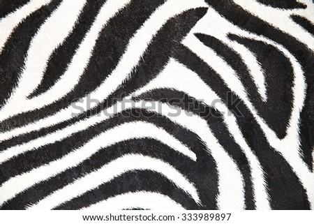 Zebra Background Black White Stripes Stock Photo 354225386