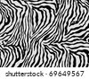 zebra skin background - stock photo