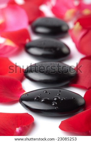 zen stones and rose petals isolated. spa background