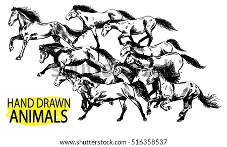 Running horse. A herd of mustangs. Drawing by hand in vintage style.