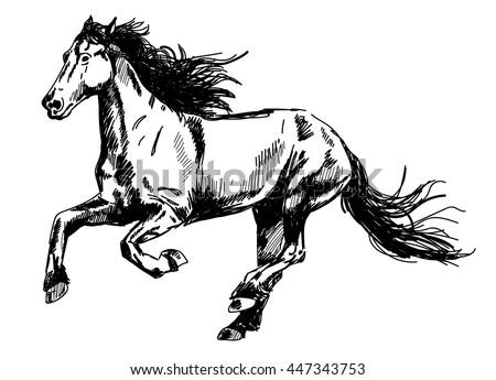 Grim Reaper Rides On His Horse Stock Illustration 38463922 ... - photo#36