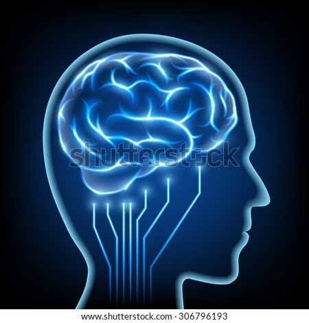 Abstract image of a human head with the brain. Stock vector image.