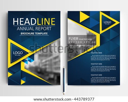 Abstract Vector Modern Flyer Brochure Annual Stock Vector