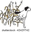 An illustrated hunting dog standing in a field of maze. Layered vector file. - stock vector
