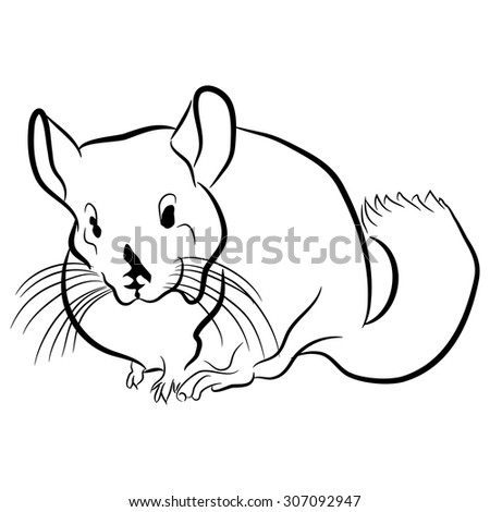 Beaver Tree Animal Coloring Pages Cartoon Stock Illustration