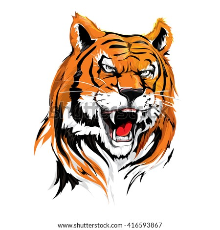 Tiger roar vector - photo#20