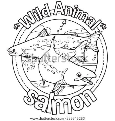 Animal Quetzal Coloring Book Stock Vector 553845154 Shutterstock